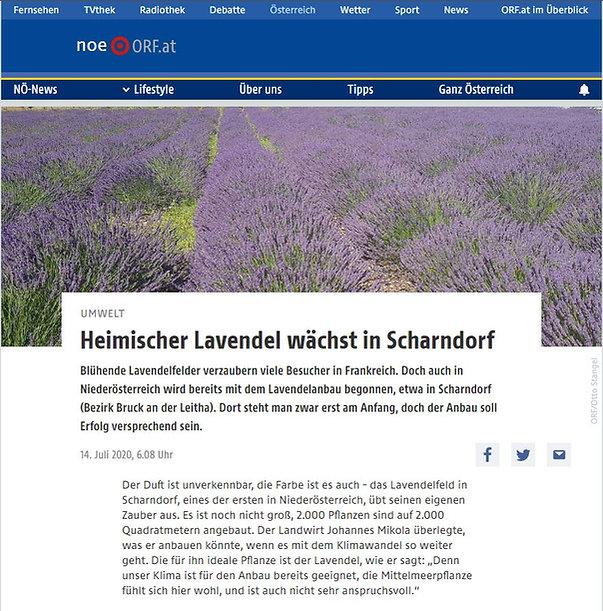 ORF NÖ Beitrag 14.07.2020.JPG