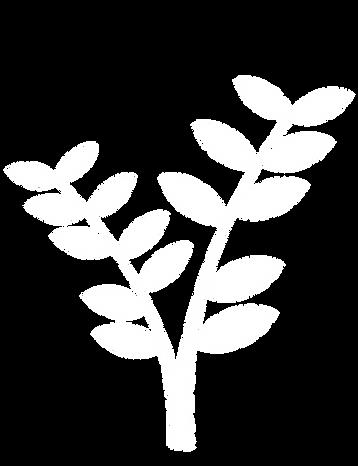 logo leaves stem.png