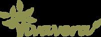 vivavera-logo-PNG-1024.png