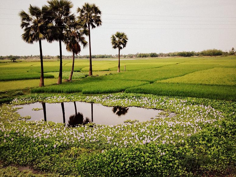 Kantha artisan village Murshidabad
