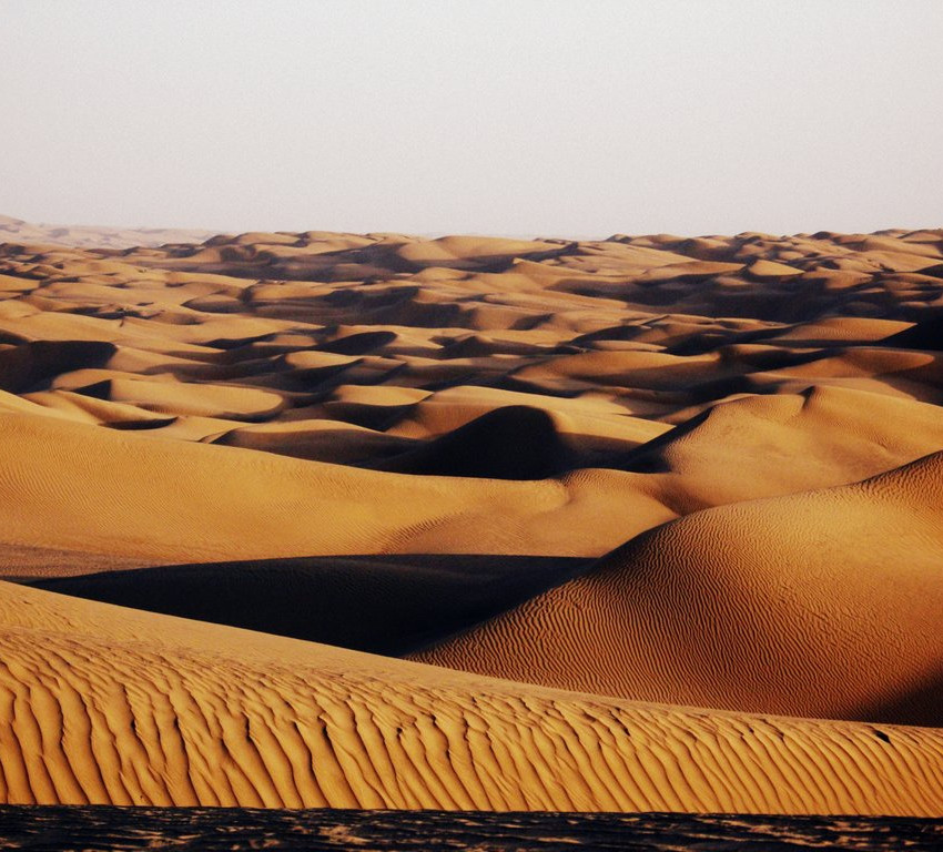 The Taklamakan Desert, the world's second largest shifting sand desert.