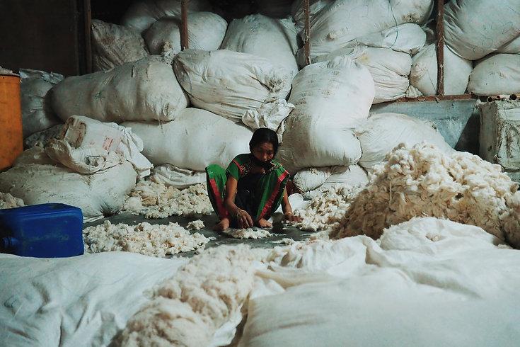 Ahimsa peace vegan silk story-007.JPG