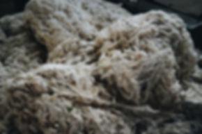 Ahimsa peace vegan silk story-003.JPG