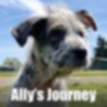 AllysJourneyWebSiteButton.jpg