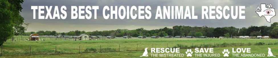 Texa Best Choices Animal Rescue I Dog Rescue & Adoption Center Quinlan, TX - Hunt County