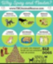 spay-neuter-infographic.jpg