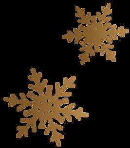 snowflake-1.png