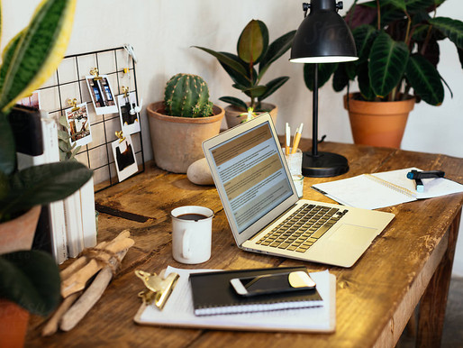 All the reasons why you need to add plants to your home office!
