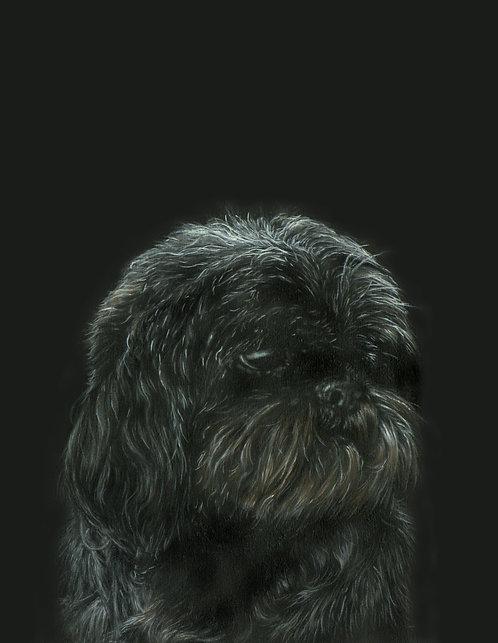 Black #2