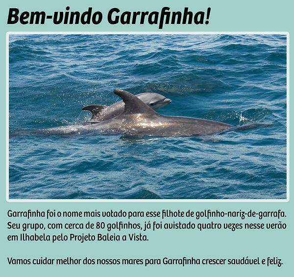 garrafinha_site.jpg