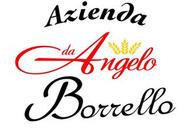 Angelo Borrello