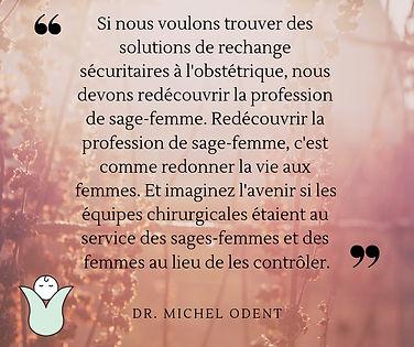 midwife post michel odent fb post.jpg