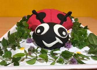 Organic Real Food Birthday Cake