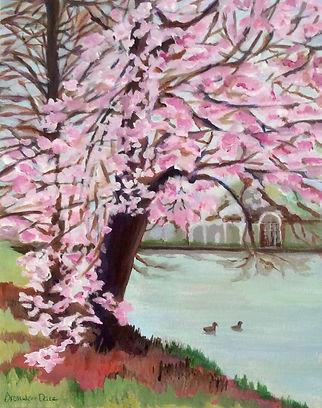Blossom Cascade in kew Gardens