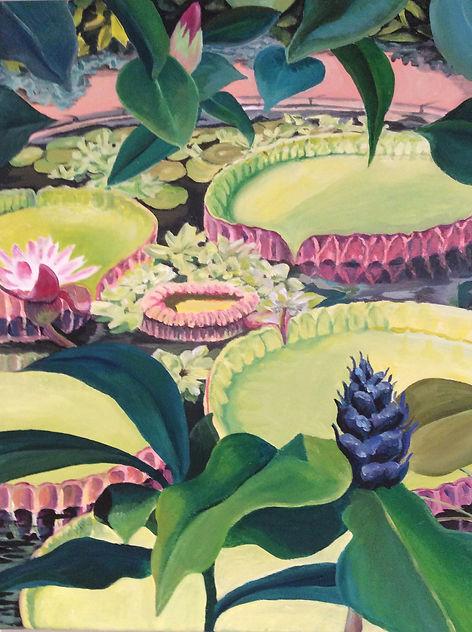The Plants and Peope House at the Edinburgh Botanics £375