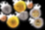 metal-coins-nautilus-indistries.png