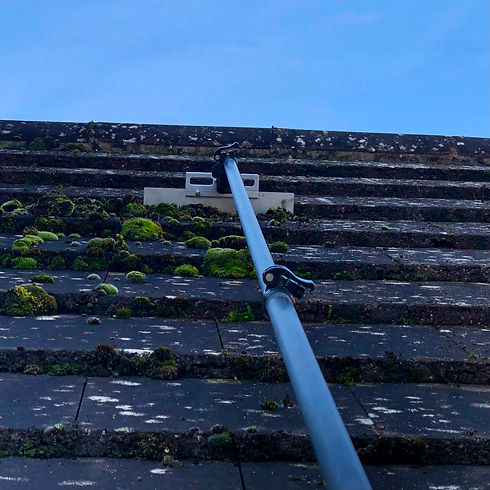 Roof Scraping and Biocide Treating.jpeg