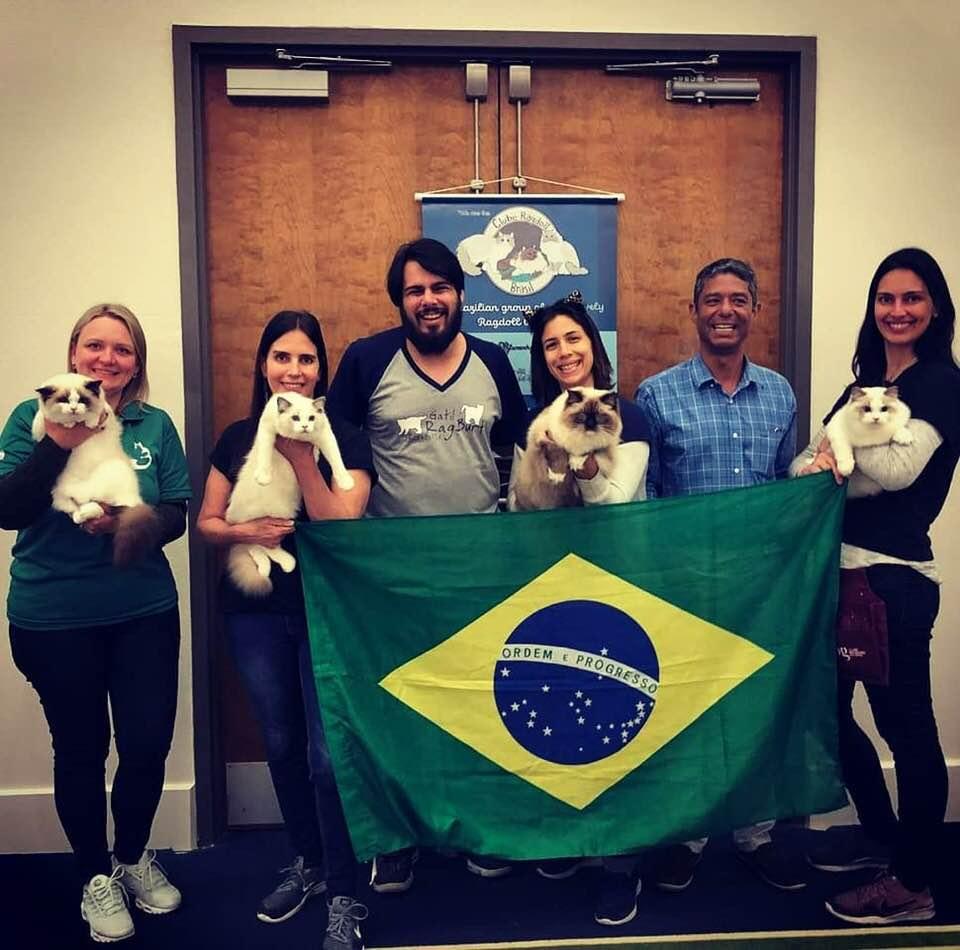 Clube Ragdoll Brasil