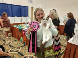 Best of Best Kitten!!!