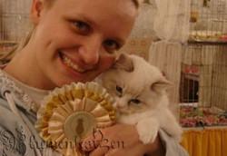 Prêmio melhor kitten da exposição