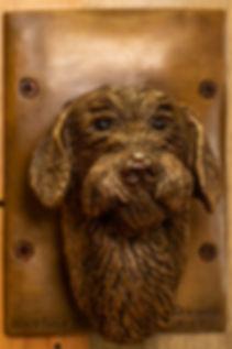 Mike's terrier-9466.jpg