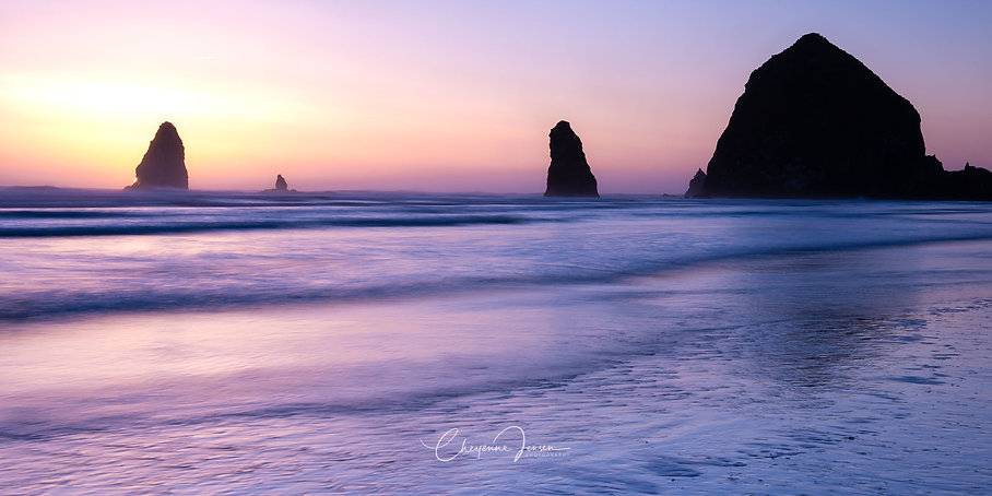 Cannon Beach Soft and Sweet-3326.jpg