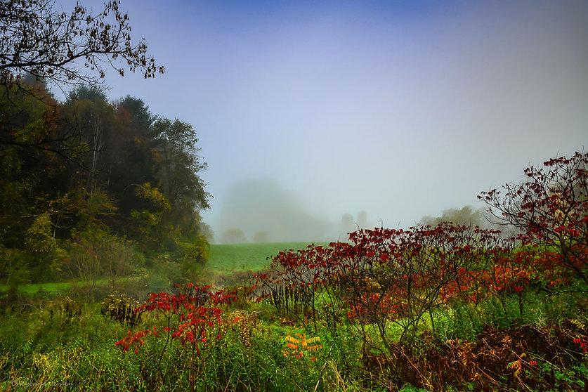 Vermont-6308.jpg