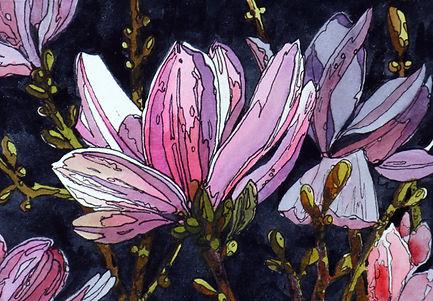 Magnolia Blossoms mini .jpg