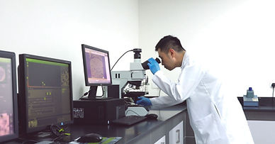 Lab Picture.JPG