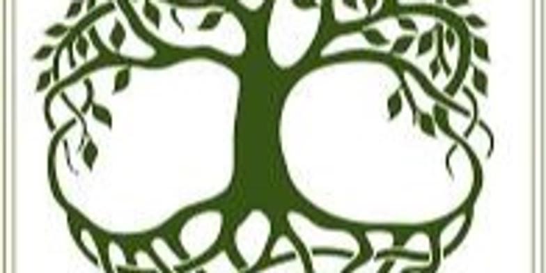 Virtual Irish Genealogy Workshop