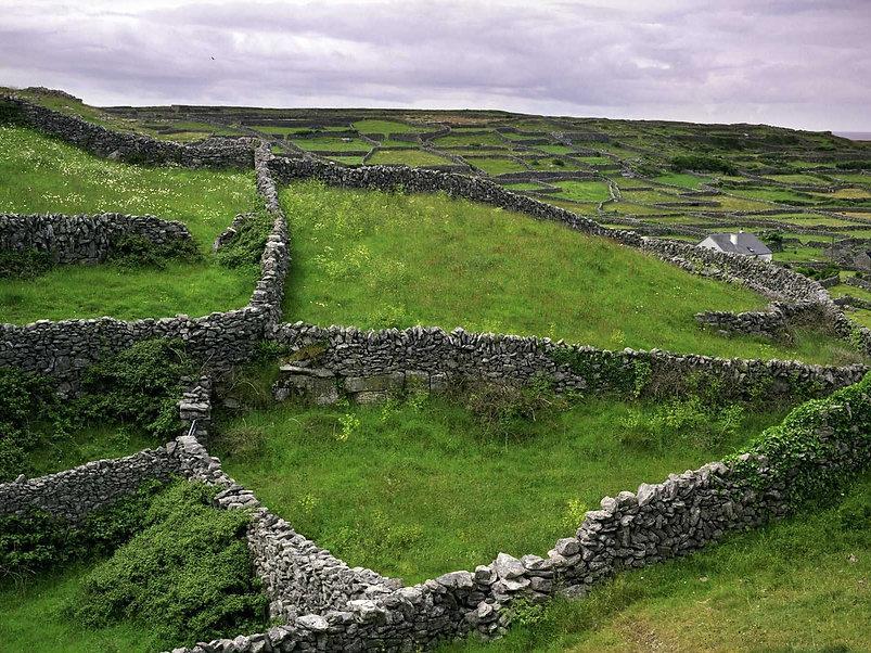 Homepage Image (irish landscape).jpg