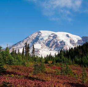 Washington State - Part 2: Mount Rainier National Park & White River Campground