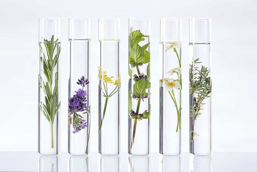 naturopathe huile.jpg