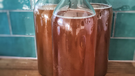 KOMBUCHA ~ The health beverage popular with everyone!