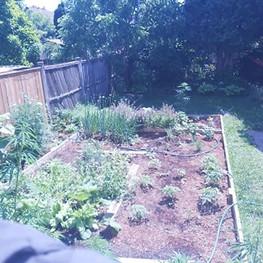 gardenshot.jpg