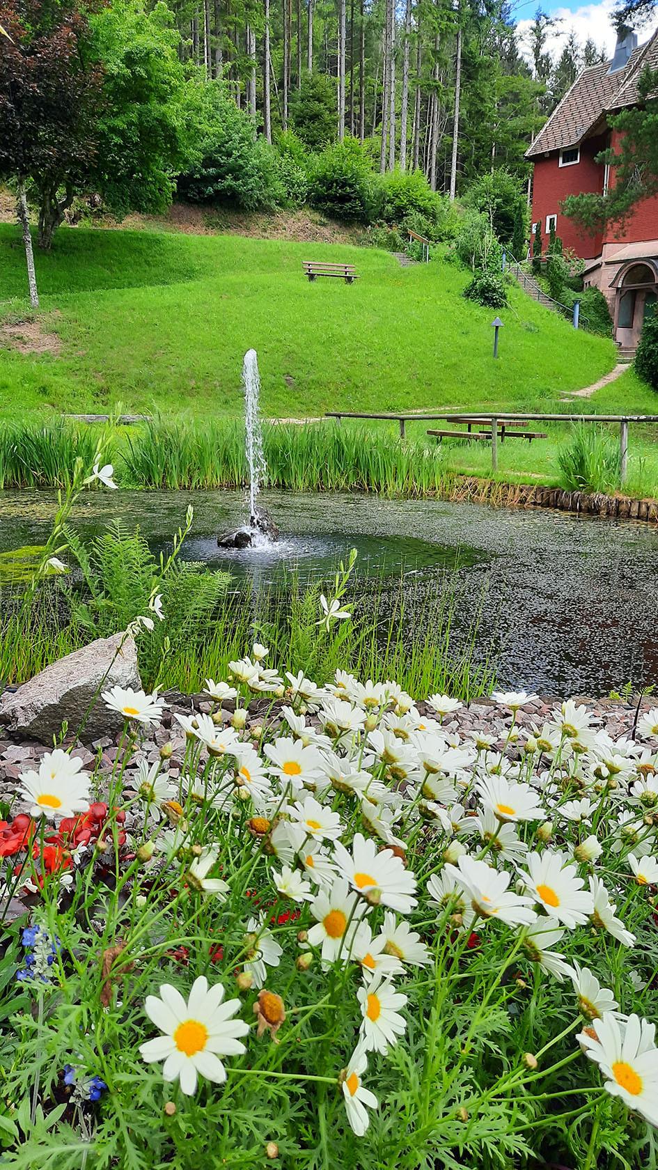 Im Vordergrund der Teich mit Springbrunnen. Um den Teich blühen Blumen. Im Hintergrund die rote Michaelskirche.