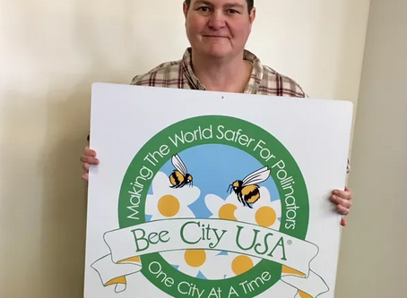THE BEE CITY USA SIGNS ARE IN!