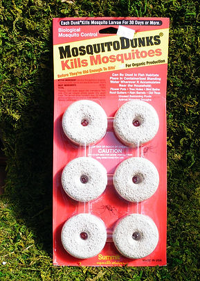 Mosquito-Dunks-800px.jpg