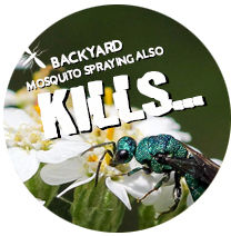 mosquito also kills icon.jpg