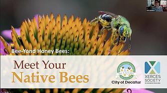 meet your native bees webinar.png