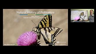 natural history.png