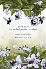 bee basics.png