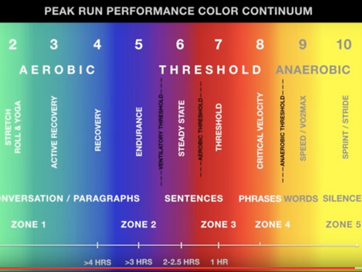 VIDEO: PRP Color Continuum