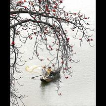SK Liang Photography