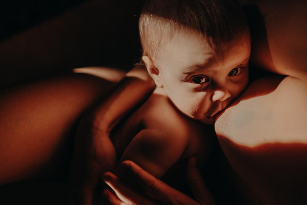 Baby ammer i nydelig lys. Ammebilde av Maria Hildebrand ved Born Wild Photography. Oslo, Elverum, Innlandet.
