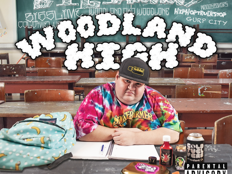 Bigsammy - Woodland High EP 12/12