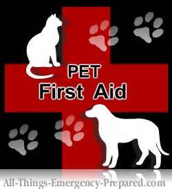 Pet CPR/First Aid