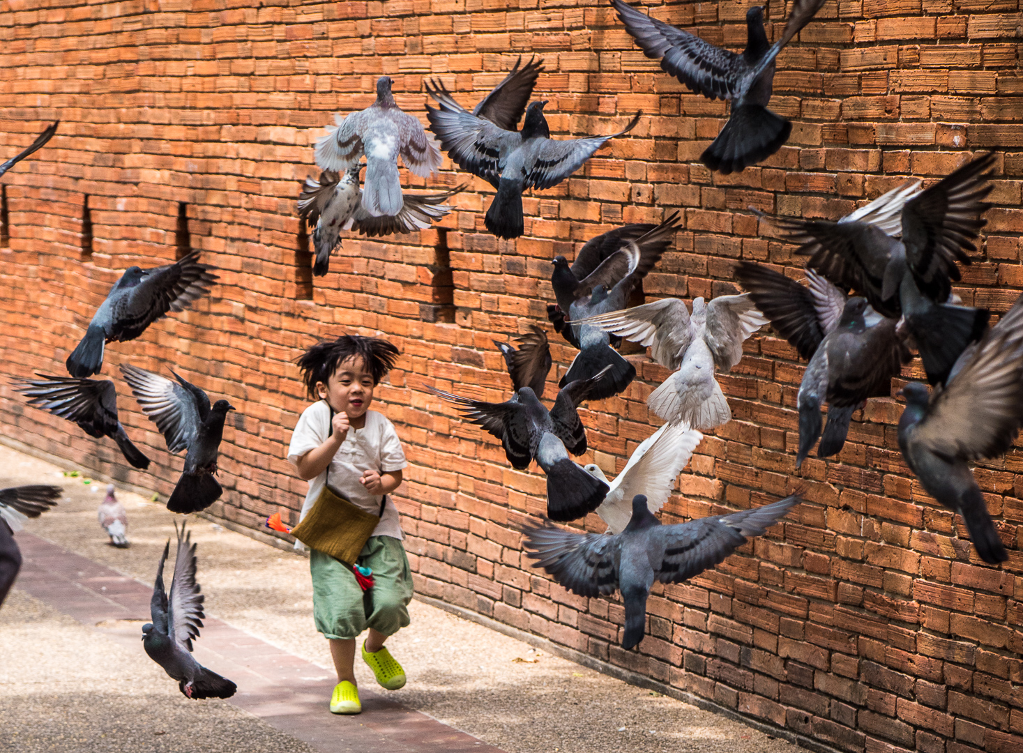 Scattering the Pigeons