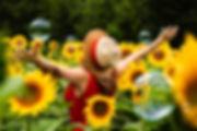 beautiful-bloom-blooming-1263985.jpg
