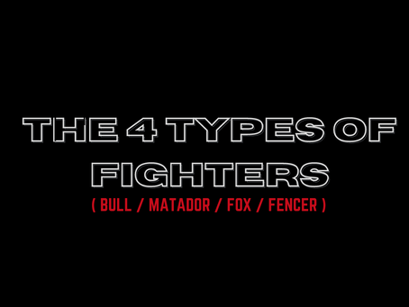 THE FOUR TYPES OF FIGHTERS: Knowing the right one for you will make all the difference!